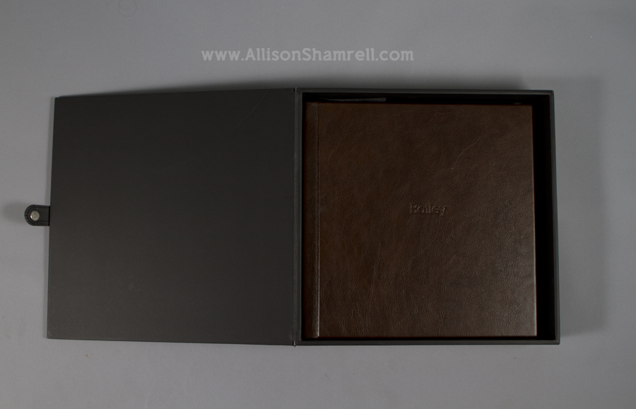 A premium album with a leather cover, featuring a Rhodesian ridgeback mix, dog photography by Allison Shamrell.