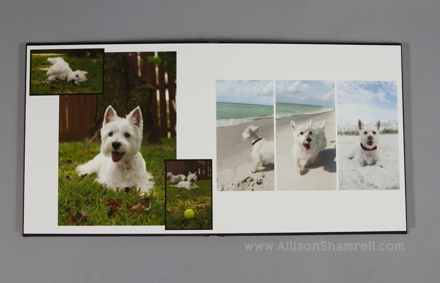 A premium album with a silk cover featuring pet photography of two Westies by Allison Shamrell.