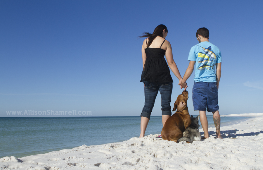 A young family stands on the beach with their bassett hound mix and husky puppy.