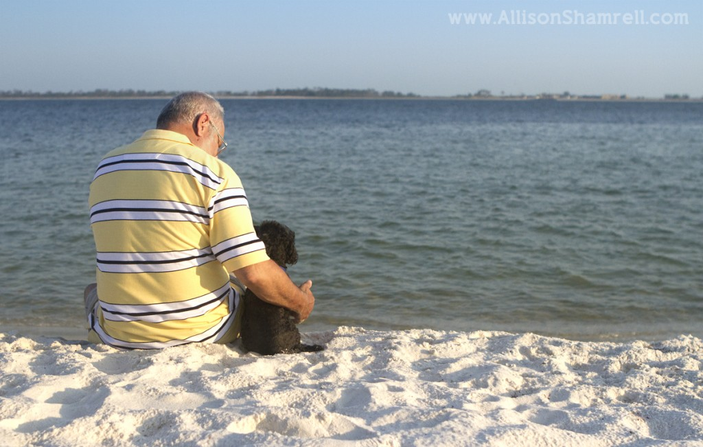 Poodle sits on the beach with his human dad.
