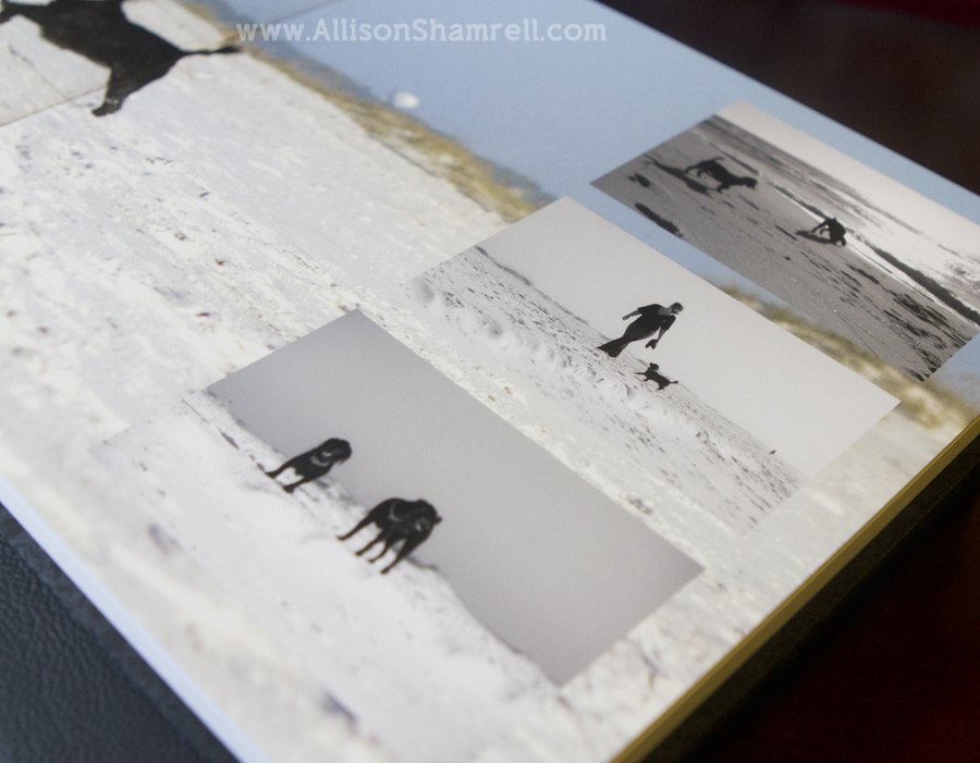 A photo of a spread inside a premium dog photography album featuring two black miniature poodles.