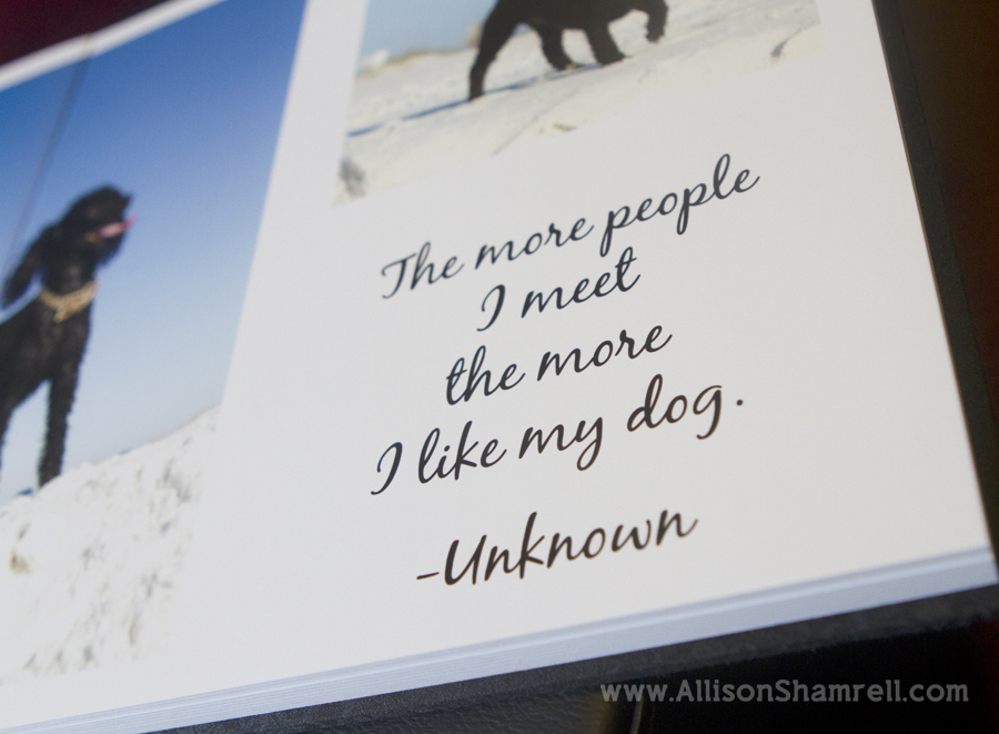 A photo of a quote inside a premium dog photography album featuring two black miniature poodles.