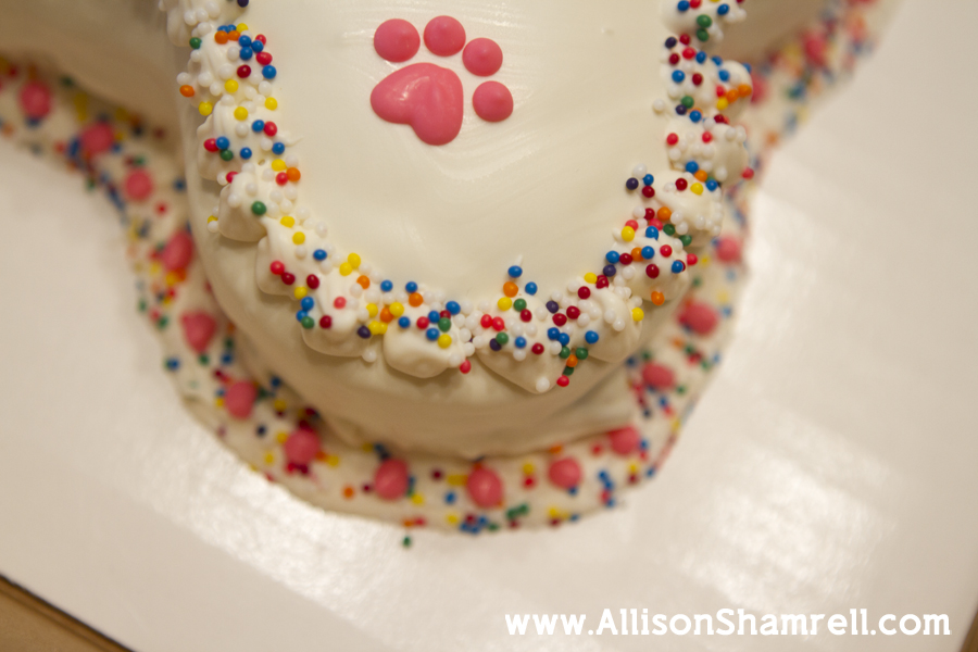 Photo of a dog's birthday cake with confetti sprinkles and pink icing.
