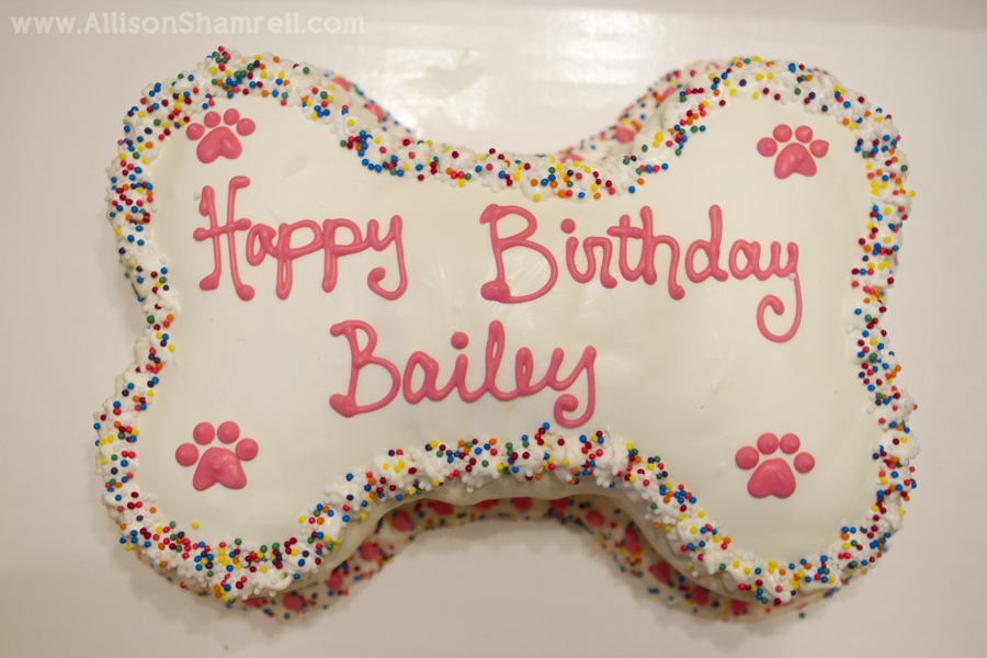"Photo of a dog's birthday cake that reads ""Happy Birthday Bailey""."