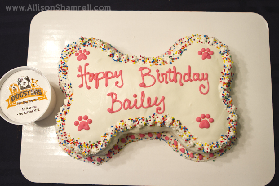 Dog Friendly Birthday Cake Recipesbnb