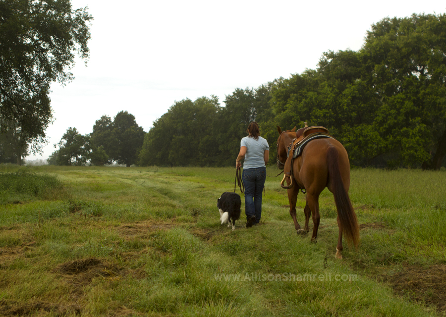 A woman walks away in a field with a border collie dog and a horse.