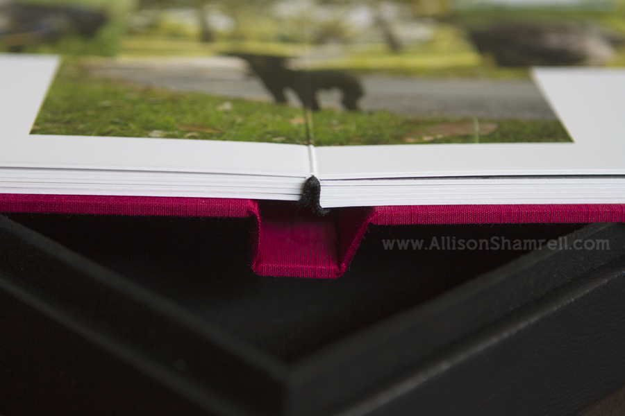 Dog photography album showing spine binding.