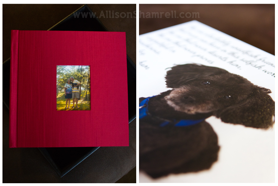 Dog photography album photos of the cover and an inside image.