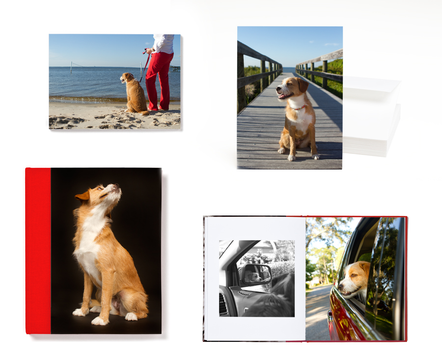 High-quality paper and book products made from consumer digital photos.