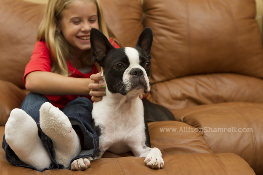 A Boston terrier and his human sibling relax on the couch.