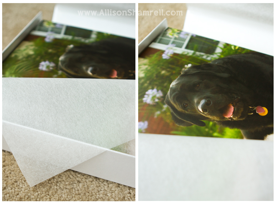 Vellum paper and a photo album.