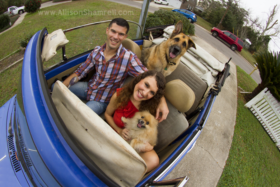 A young couple with a pomeranian and a German shepherd smile for a photo in an old VW bug.