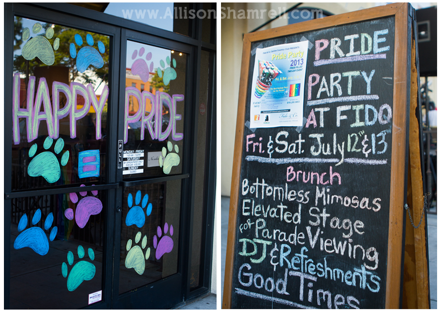 dog boarding gay pride party