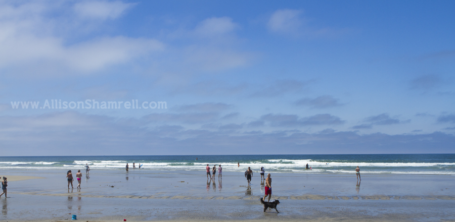 del mar dog beach