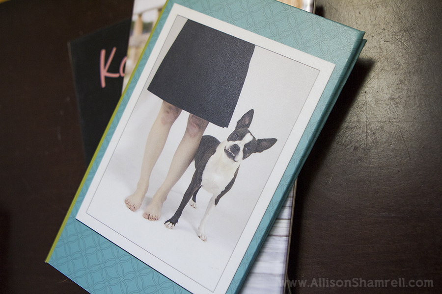 sample pet photography books