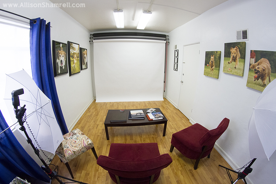 fisheye studio photo