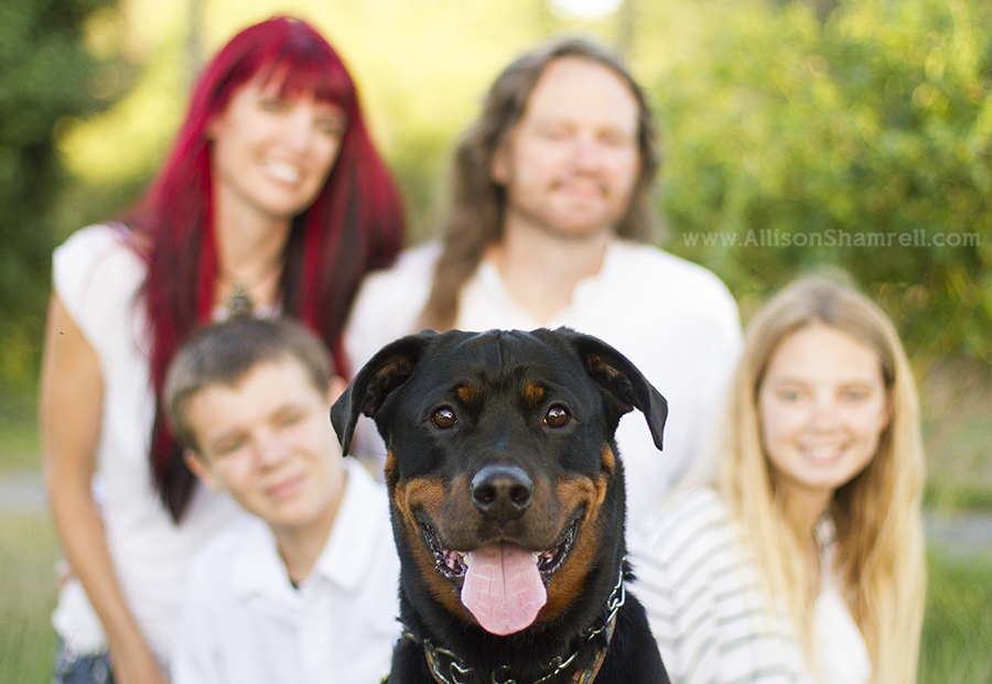 alternative family photo with dog