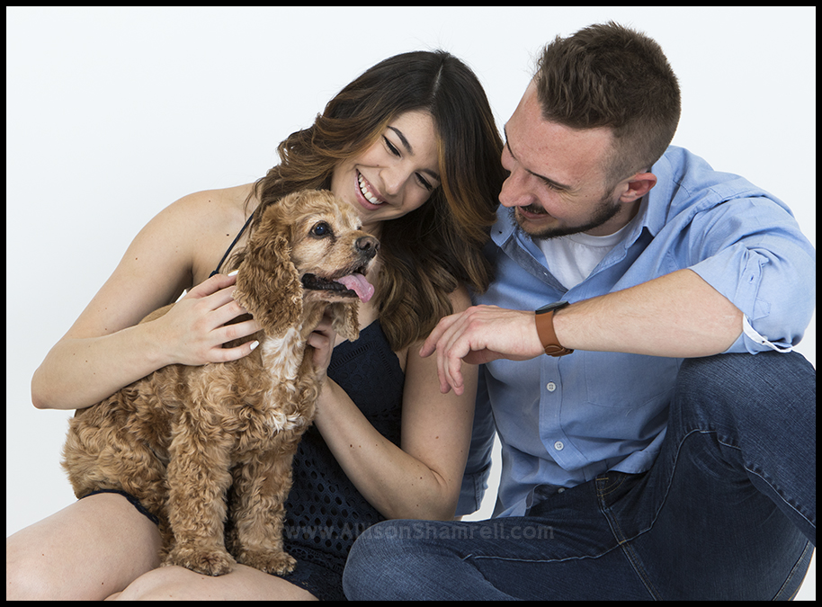 pet photography proposal shoot